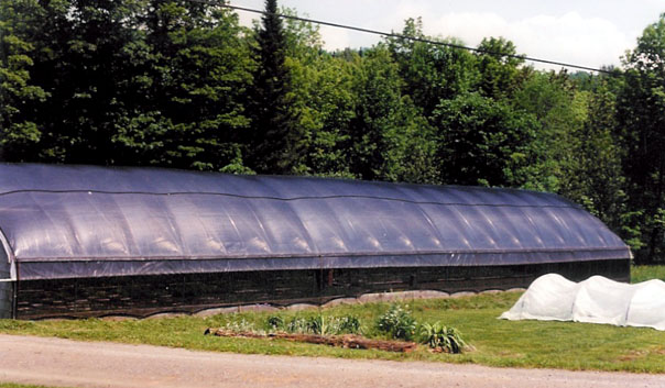 Cypripedium Greenhouse 2 Exterior